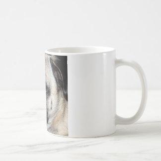 Carlin Mug