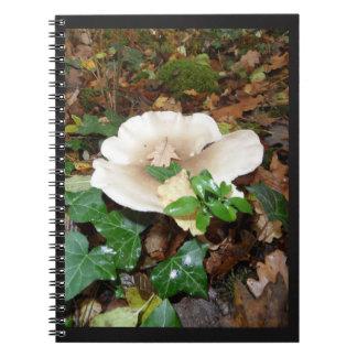 carnet automne champignon feuilles bois mousse