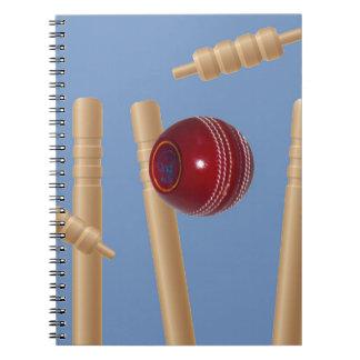 Carnet Boule et tronçons de cricket,