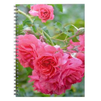 Carnet Bouquet de rose de rose
