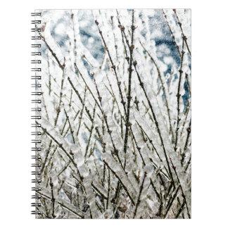 Carnet Branches de glace d'hiver