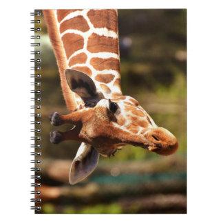 Carnet Brown mignon et portrait blanc de visage de girafe