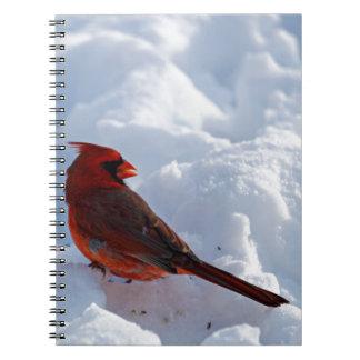 Carnet Cardinal dans la neige