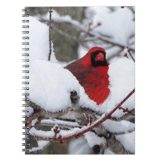Carnet Cardinal de neige