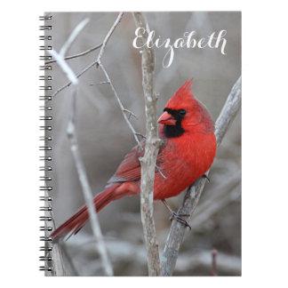 Carnet Cardinal du nord