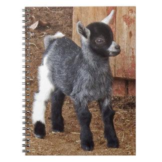 Carnet Chèvre adorable de bébé