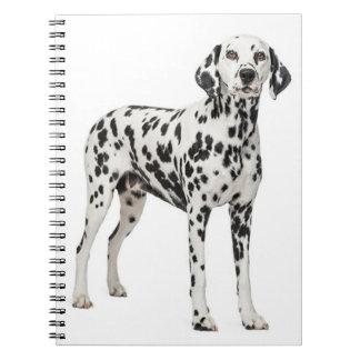 Carnet Chiot dalmatien d'amour - chien repéré du feu