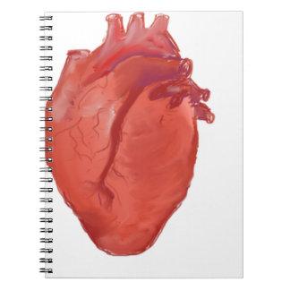 Carnet Conception d'anatomie de coeur