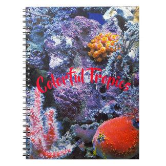 Carnet Corail coloré de mer