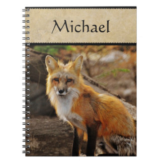 Carnet de faune/Fox rouge