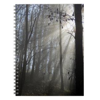 Carnet de photo de brume de matin de région boisée
