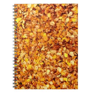 Carnet de photo de feuille d'automne