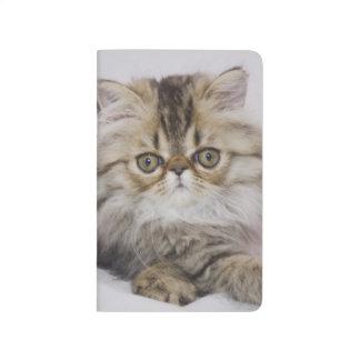 Carnet De Poche Chat persan, catus de Felis, chat tigré de Brown,