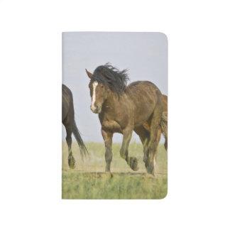 Carnet De Poche Chevaux sauvages sauvages 3 de caballus d'Equus de