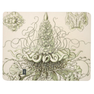 Carnet De Poche Ernst Haeckel Siphonophorae