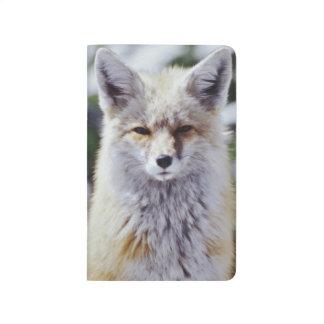 Carnet De Poche Fox rouge se reposant sur la banque de neige,