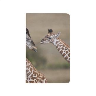 Carnet De Poche Girafe de Maasai (girafe Tippelskirchi) comme vu