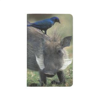 Carnet De Poche L'Afrique du Sud, Pilanesburg GR, Warthog