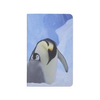 Carnet De Poche L'Antarctique. Pingouins et poussin d'empereur
