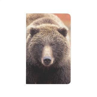 Carnet De Poche Les Etats-Unis, Alaska, Denali NP, ours gris