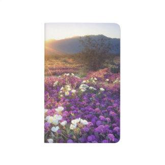 Carnet De Poche Les Etats-Unis, la Californie, parc d'état de