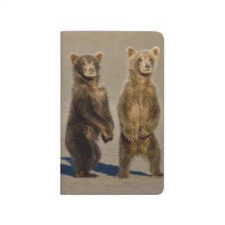 Carnet De Poche LES Etats-Unis. L'Alaska. Les petits animaux