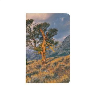 Carnet De Poche Les Etats-Unis, Wyoming, Teton grand NP. Le lever