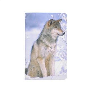 Carnet De Poche Loup de bois de construction se reposant dans la
