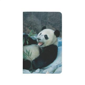 Carnet De Poche Panda mangeant le bambou par la berge, Wolong, 2