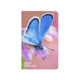 Carnet De Poche Papillon azuré