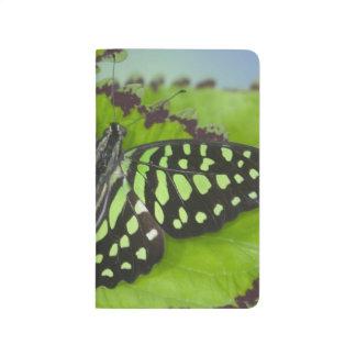 Carnet De Poche Photographie de Sammamish Washington de papillon