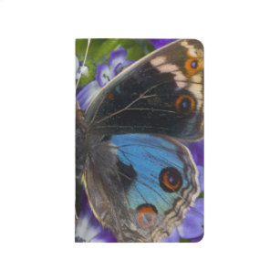 Carnet De Poche Photographie de Sammamish Washington du papillon 9