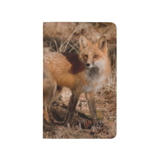 Carnet De Poche Plan rapproché de renard rouge