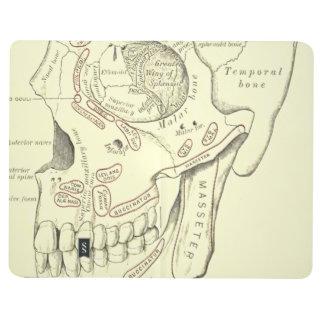 Carnet De Poche Région vintage d'Anterolateral d'anatomie du crâne