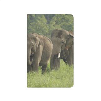 Carnet De Poche Sortir de famille d'éléphant d'Asie