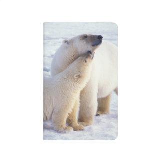 Carnet De Poche Truie d'ours blanc avec l'petit animal, banquise