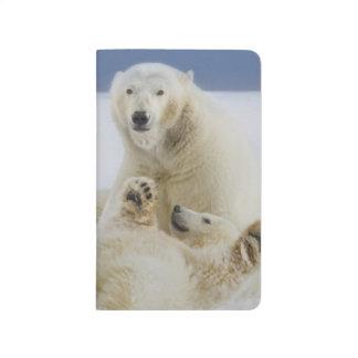 Carnet De Poche Un ours blanc femelle et son petit animal jouent