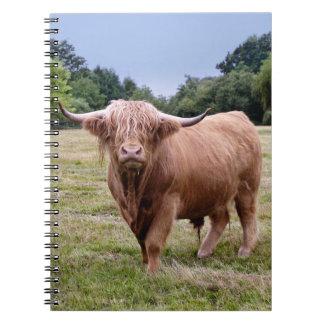 Carnet des montagnes de vache