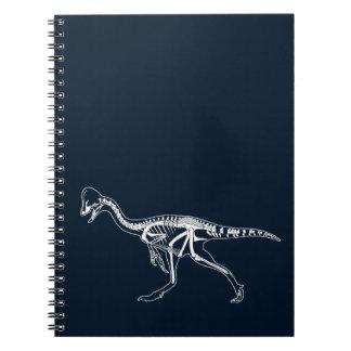 Carnet Dinosaure, Dino, illustration de squelette de