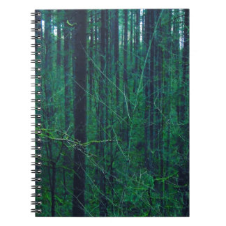 Carnet Forêt verte