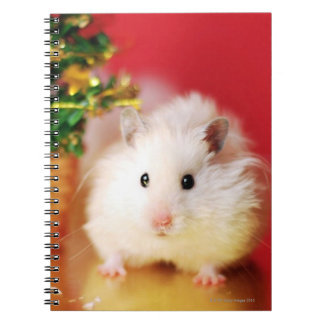 Carnet Hamster Kokolinka avec l'arbre de Noël
