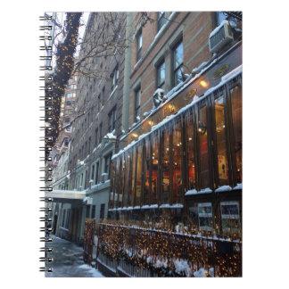 Carnet Hiver supérieur NYC de New York City de glaçons de