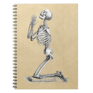 Carnet Illustration de squelette d'anatomie
