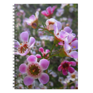 Carnet/journal personnel - le manuka rose fleurit carnet