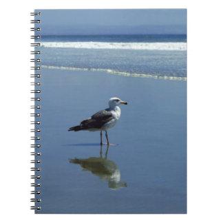 Carnet/journal personnel - mouette sur la plage carnets