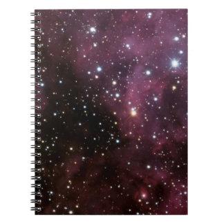 Carnet La nébuleuse de Carina (NGC 3372)