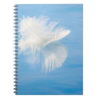 Carnet La plume blanche réfléchit sur l'eau | Seabeck, WA