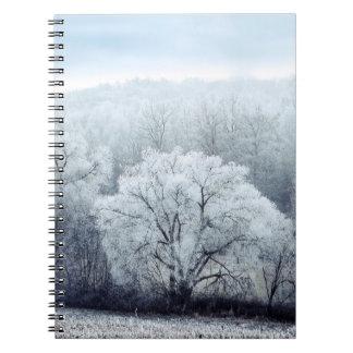 Carnet Le paysage brumeux d'hiver avec la neige a couvert