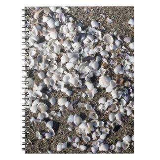 Carnet Les coquillages l'été de sable échouent la vue