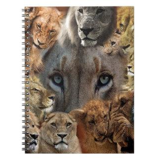 Carnet Lions heureux